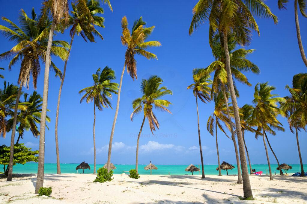 Почивка в Доминикана с директен чартър от София